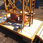 Скриншоты из игры Goat Simulator