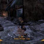 Скрины к игре Fallout New Vegas